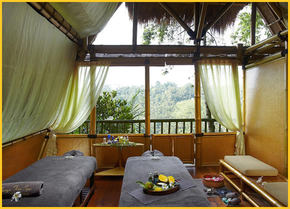 Tree Spa with View at Spa by L'OCCITANE - Ubud